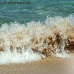 Strandgut aus dem Meer des Internets