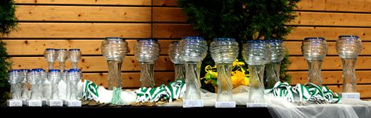 Acro Cup in Albershausen