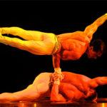 Ein Gesamtkunstwerk wie im Cirque du Soleil